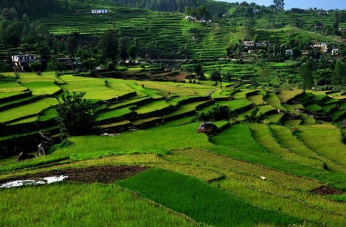 acj-2001-places-near-rishikesh-5