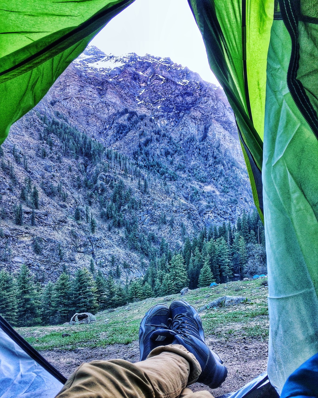 A view from my tent