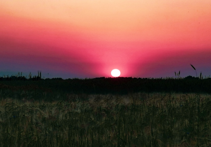 Sunset in Starkowo in Greater Poland