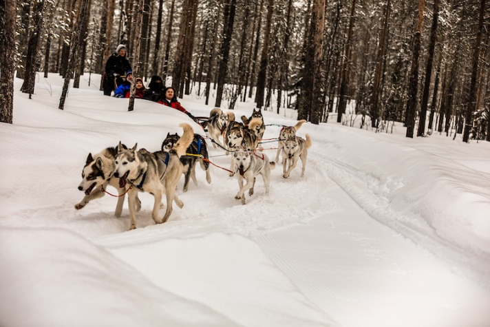 Nordic Unique Travels Rovaniemi Lapland Finland.