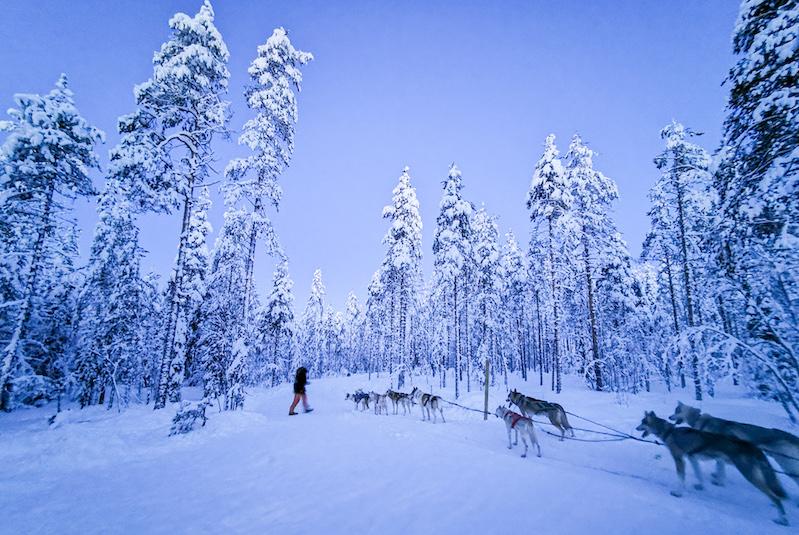 winter_activities_in_lapland5