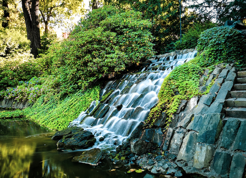 Botanical Garden in Wroclaw during summer