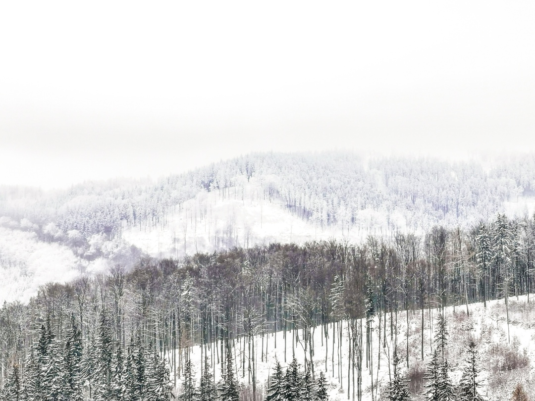 Owl Mountains landscape in Bielawa