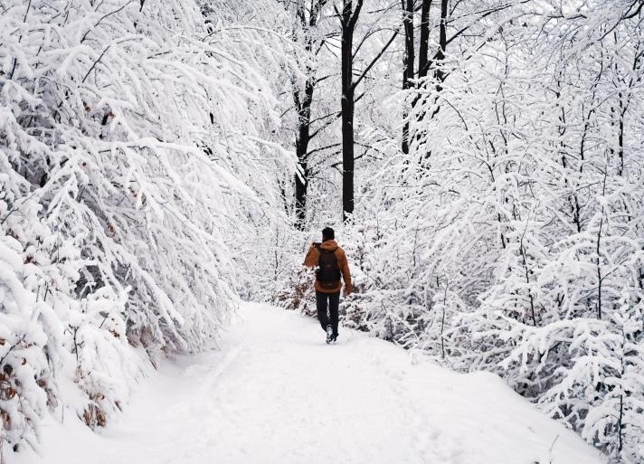 Hike trail in Park Krajobrazowy Gór Sowich