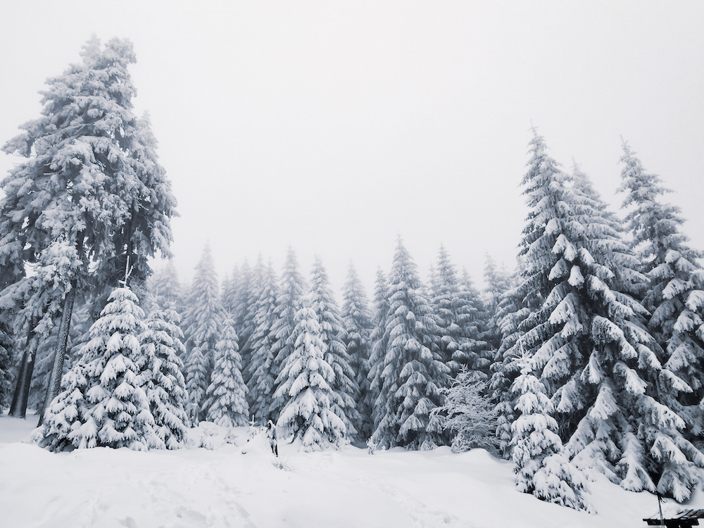 Snow swept outdoors of Gory Sowie near Wroclaw