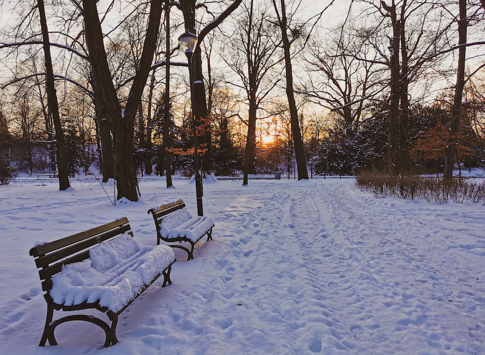 A park in Wroclaw in winter