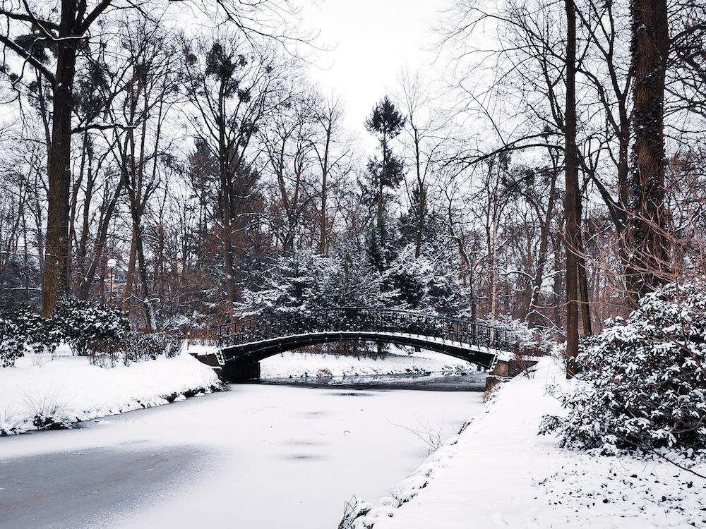 Japanese Garden in Wroclaw in winter